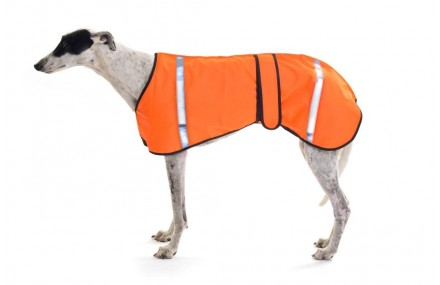 Autumn Safety Coat